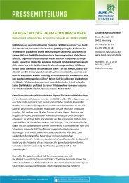 bn weist wildkatze bei schwabach nach - Bund Naturschutz in ...