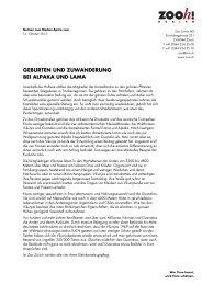 Geburten und Zuwanderung bei Alpaka und Lama [PDF ... - Zoo Zürich