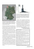 Herbst 2013 - Dachverband Deutscher Avifaunisten - Page 6