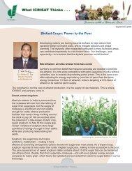Biofuel crops: Power to the Poor - icrisat