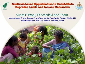 Biodiesel-based Opportunities to Rehabilitate Degraded ... - Icrisat
