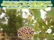 Biofuels in Africa - icrisat