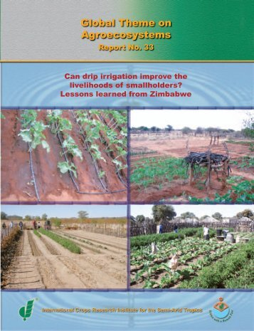 Can drip irrigation improve the livelihoods of smallholders? - icrisat