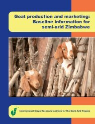 Goat production and marketing: Baseline information for ... - icrisat