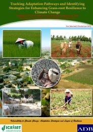 Regional synthesis report - icrisat