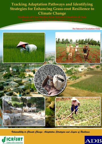 Regional synthesis report - icrisat