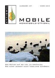 ETTISWIL - ap-backoffice.ch