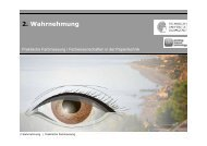 PrFM_02_Wahrnehmung_2012_V2 - Institut für Druckmaschinen ...
