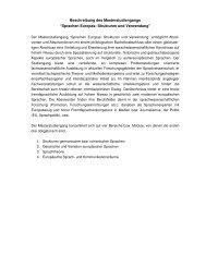 Kurzbeschreibung des Masterstudiengangs