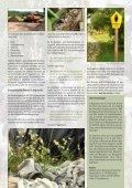 Ausgabe 3/2013 - Stadtwerke Rendsburg - Seite 7