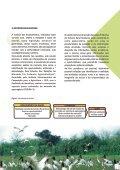 estudo preliminar da cadeia produtiva turismo rural brasil - Page 7