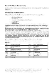 Modulhandbuch für den Masterstudiengang MA Germanistik ... - IDF