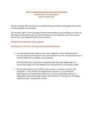 NEUE STUDIENORDNUNG IM MASTERSTUDIENGANG - IDF