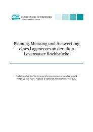 Planung, Messung und Auswertung eines Lagenetzes an der alten ...