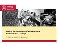 Institut für Dynamik und Schwingungen Kompetenzfeld Tribologie