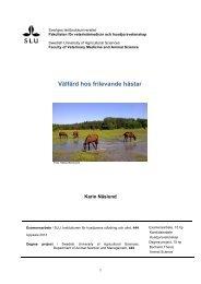 Välfärd hos frilevande hästar - SLU