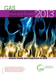 Medium-Term Gas Market Report 2013 - IEA