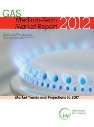 Medium-Term Gas Market Review 2012 - IEA