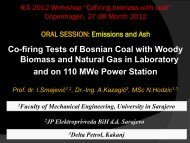 Co-firing Tests of Bosnian Coal with Woody Biomass and Natural ...