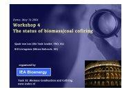 TNO Presentation - IEA Bioenergy Task 32