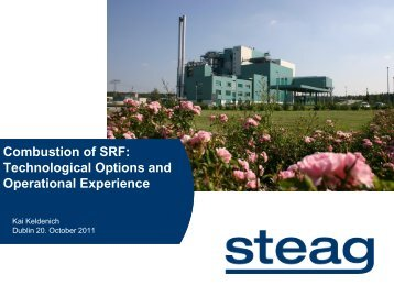 Combustion of SRF