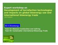 Jaap Koppejan, IEA Bioenergy Task 32, Enschede, The Netherlands