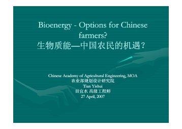 生物质能 - IEA Bioenergy Task 32