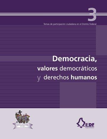 Democracia, valores democráticos y derechos humanos - Instituto ...