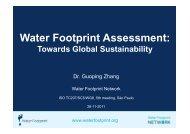 water footprint - IEE/USP