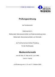 Prüfungsordnung mit Änderungen zum 1.3.2001 als PDF ... - IEM