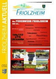 Blättle KW29 - Friolzheim