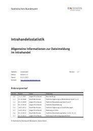 Allgemeine Informationen zur Dateimeldung - IDEV - Statistisches ...