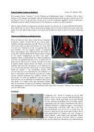 Første reisebrev, 26. oktober 2005 - NTNU