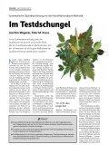 Fachartikel (pdf) - Berner & Mattner - Page 2