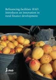 Refinancing facilities: IFAD introduces an innovation in rural finance ...