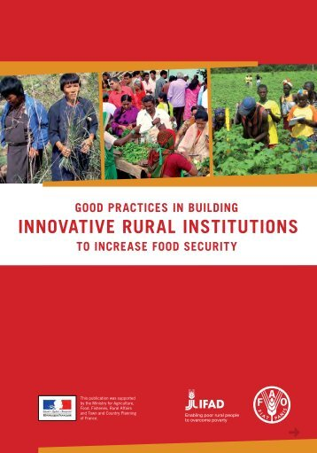 Good Practices in Building Innovative Rural Institutions to - FAO