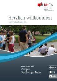 ESB_MGH_130828.pdf (4,23 MB) - DHBW Mosbach