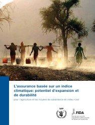 L'assurance basée sur un indice climatique: potentiel d ... - IFAD