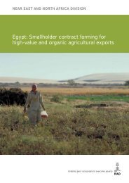 Egypt: Smallholder contract farming for high-value and ... - IFAD