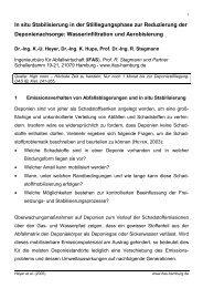 In situ Stabilisierung in der Stilllegungsphase zur ... - IFAS-Hamburg