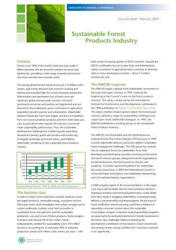 Ex Brief SFPI project Feb 2007.pdf - IFC