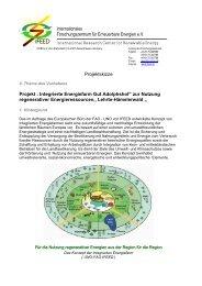 Projektskizze als PDF-Dokument laden... - IFEED