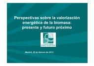 Perspectivas sobre la valorización energética de la biomasa ... - Ifema
