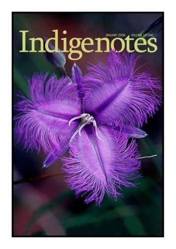 indigenotes volume 19 number 1 january 2008 volume 19 one