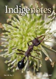 Vol. 18, No. 1 March 2007 - Indigenous Flora and Fauna Association