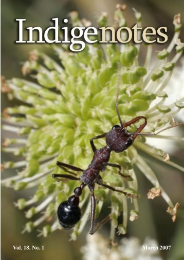 Vol. 18, No. 1 March 2007 - Indigenous Flora and Fauna Association