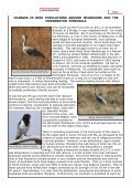 SPIFFA NEWSLETTER - Indigenous Flora and Fauna Association - Page 2