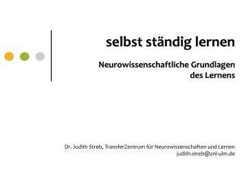 Neurowissenschaftliche Grundlagen des Lernens - IFP