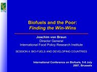 Biofuels and the Poor - International Food Policy Research Institute