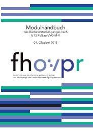 Modulhandbuch § 12/13 (2.48 MB) - Fachhochschule für öffentliche ...